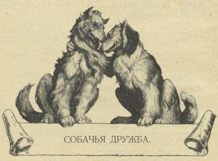 Собачья дружба